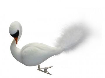 Skleněná labuť, bílá